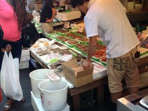 鮮魚店から億り人に(イメージ)