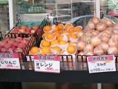 100円均一ショップの野菜の品質は?