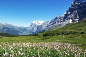 穏やかなイメージを抱くスイスだが…