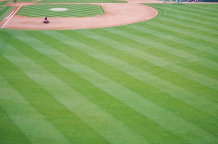 プロ野球チームが負担する遠征費はいくら?