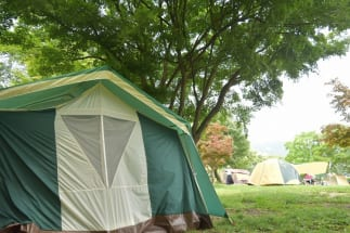 若いキャンプ愛好者が増える理由とは