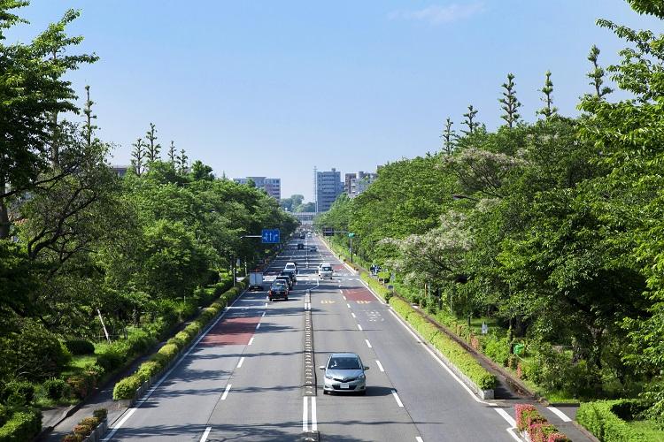 気持ちの良い散歩コースがある街はやっぱり最高