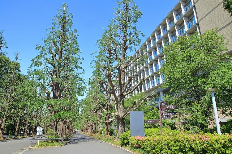 日吉といえば慶應大学の日吉キャンパス