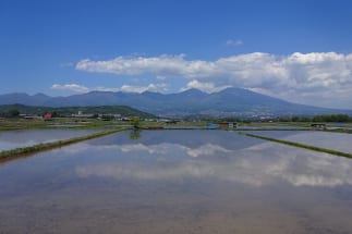 佐久市は地震が少なく、山に囲まれていることから台風の被害も受けにくいという