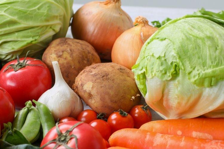 「野菜スペシャリスト」の模擬テストに挑戦