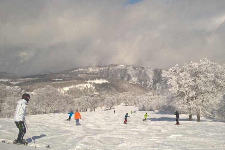 新潟県湯沢町の「応援感謝券」は、スキー場施設はじめ、町内ほとんどの支払いが可能