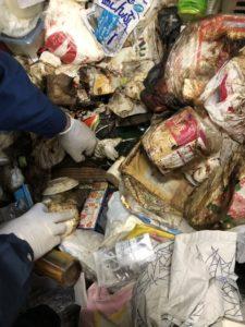 死後約2週間後に発見された70代女性の部屋。遺体はゴミの上に倒れていた