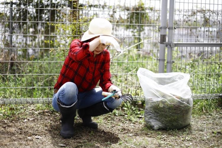草むしりの仕事は20Lのゴミ袋1つ分の作業で1000円ほどの収入(イメージ)