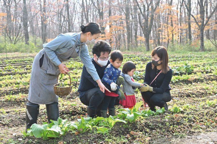 リゾナーレ那須のコンセプトは日本初の「アグリツーリズモリゾート」。敷地内の畑で農業体験のできるアクティビティも充実している(撮影/太田真三)