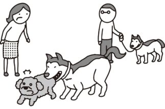 大切な愛犬が他の犬に噛まれてしまって…(イラスト/大野文彰)