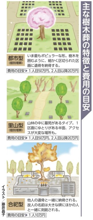 「都市型」「里山型」「合祀型」主な樹木葬の特徴と費用の目安
