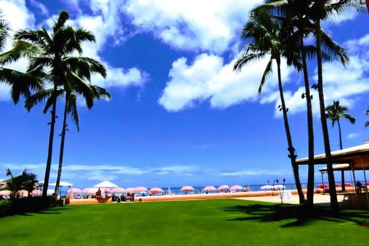 コロナ禍のハワイ旅行でやっておくべき手続きは?